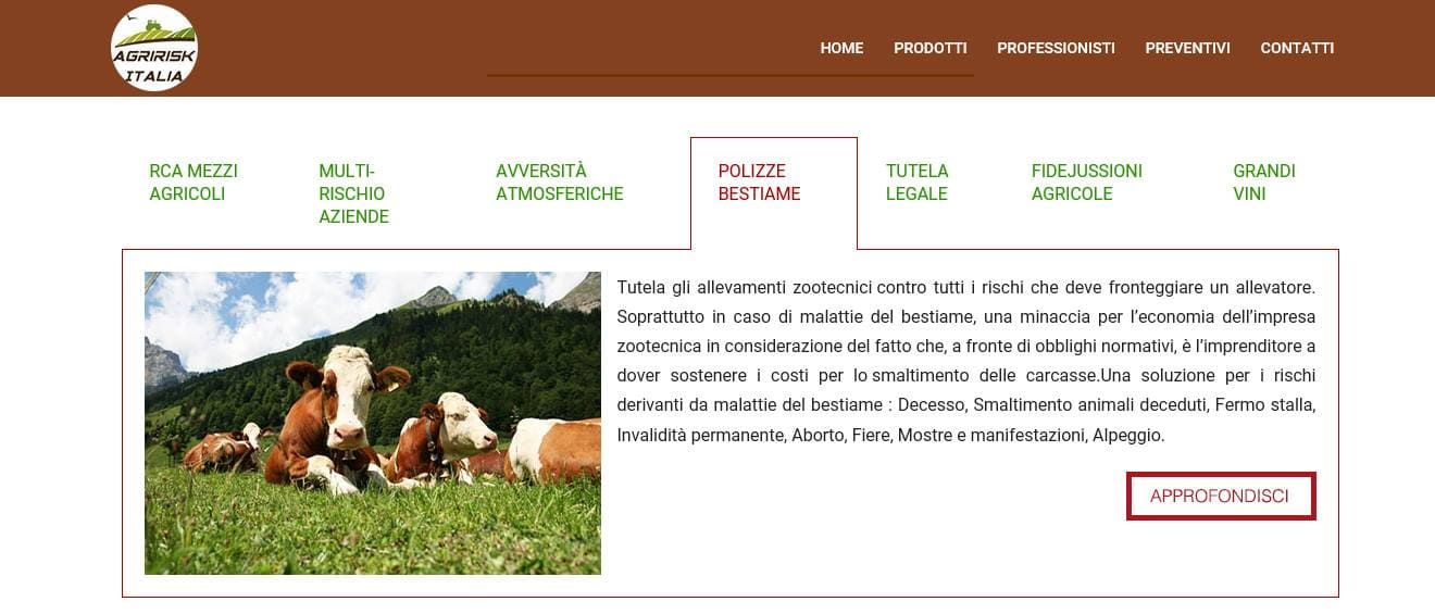 SVILUPPO SITI WEB ROMA PER AZIENDE AGRICOLE